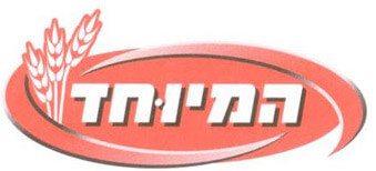 לוגו המיוחד